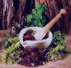 کاهش قندخون با گیاهان دارویی