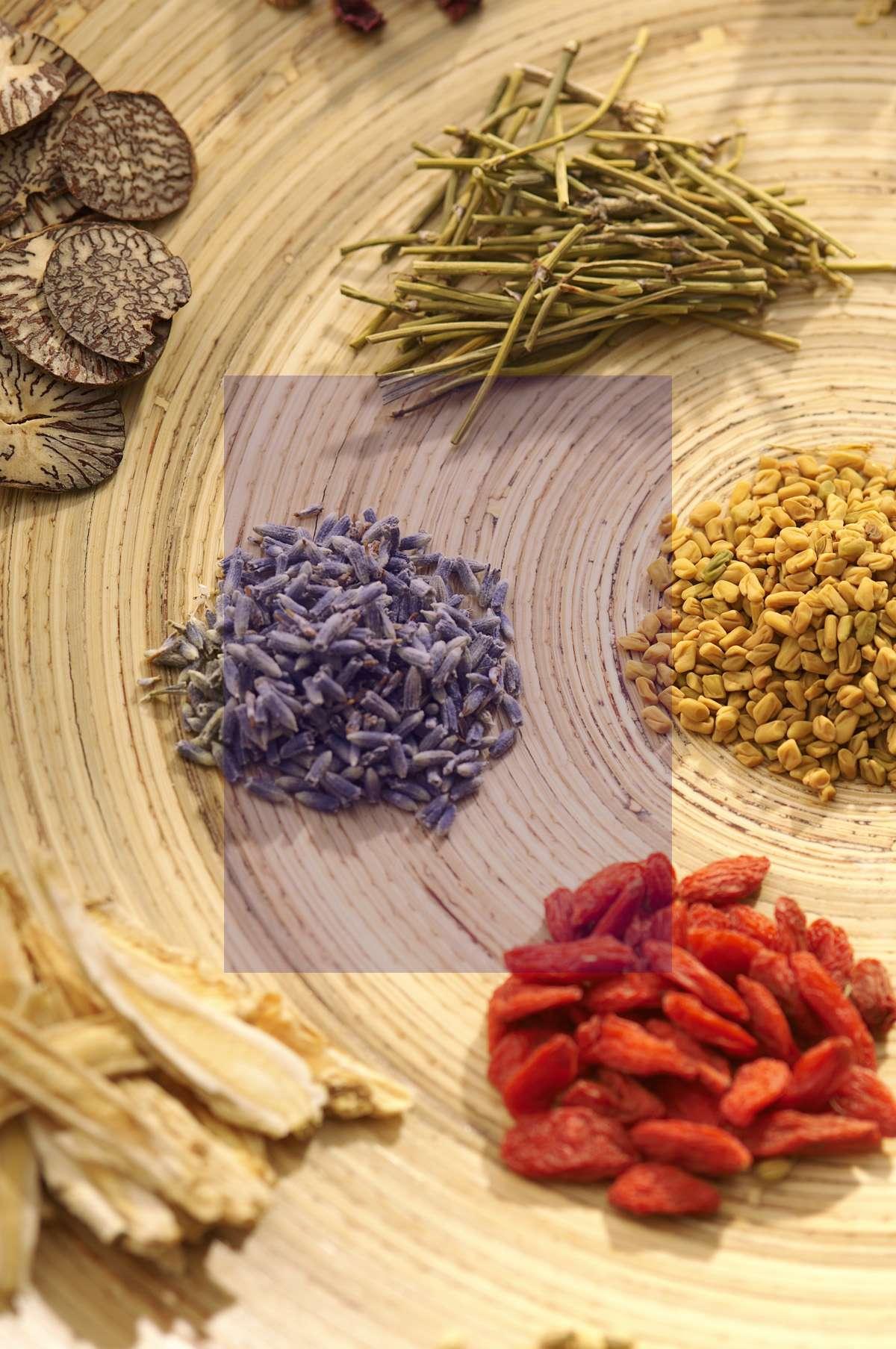 گیاهان دارویی و درمان بیماری های لثه و دهان