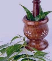 کاهش دردهای قاعدگی با گیاهان