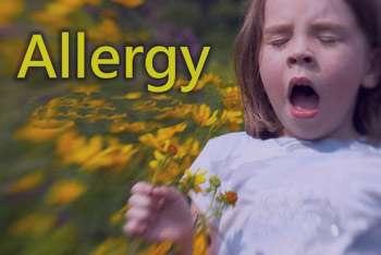 با این روش ها با آلرژی مقابله کنید
