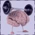راه ها و روشهای تقویت حافظه کوتاه مدت و بلند مدت