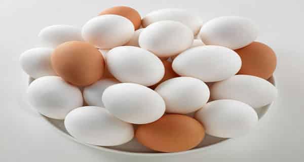 تعبیر خواب تخم مرغ ، تعبیر خواب شکستن تخم مرغ ، تعبیر خواب تخمه مرغ