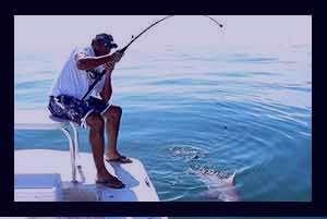 تعبیر خواب ماهی گیری