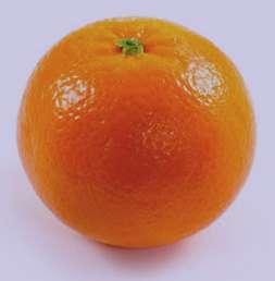 تعبیر خواب پرتقال