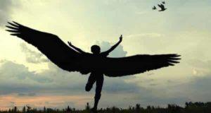 تعبیر خواب پرواز کردن | 60 تعبیر دیدن پرواز در خواب