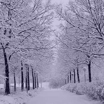 تعبیر خواب زمستان