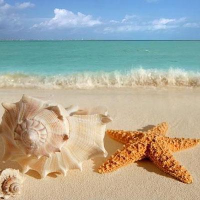 شعر در مورد ساحل