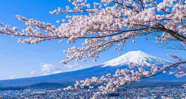 شعر دو بیتی در مورد بهار ، شعر در مورد بهار و نوروز ، شعر در مورد بهار شیراز ، شعر زیبا در مورد بهار