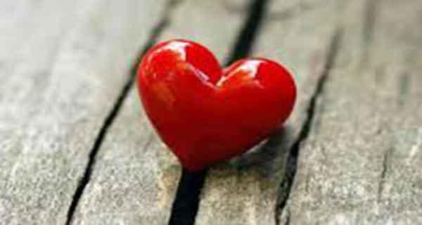 شعر در مورد دل