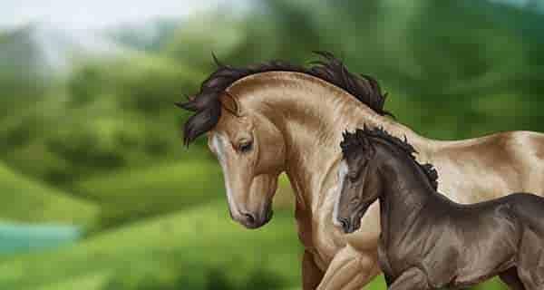 شعر در مورد اسب زیبا ، شعر در مورد اسب نجیب ، شعر در مورد اسب ترکمن