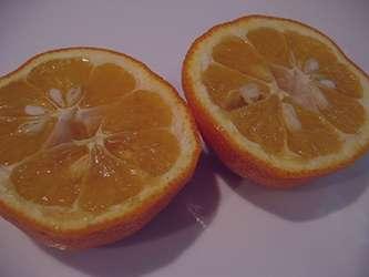نارنج و لاغری , آب نارنج و لاغری , نارنج لاغری , خواص نارنج و لاغری , نارنج برای لاغری