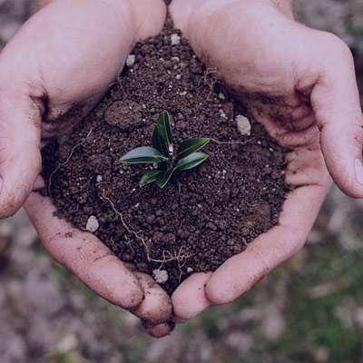 شعر در مورد خاک