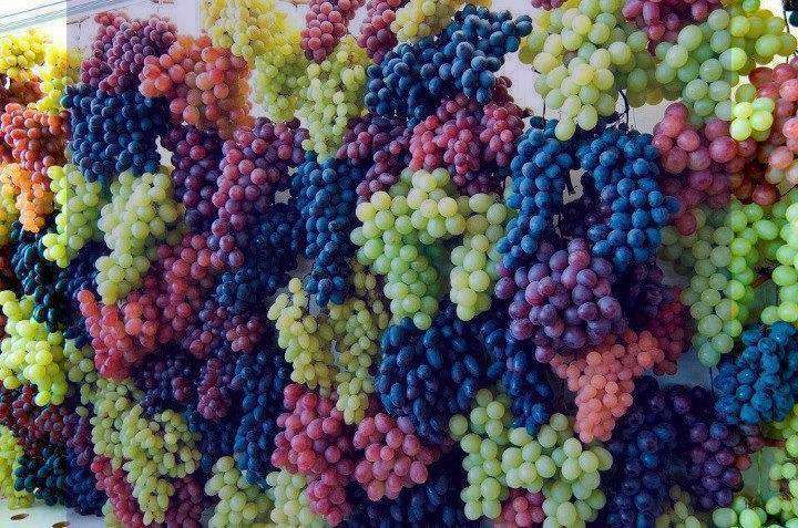 شعر در مورد انگور