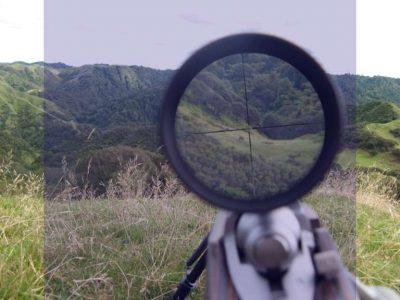 شعر در مورد شکار