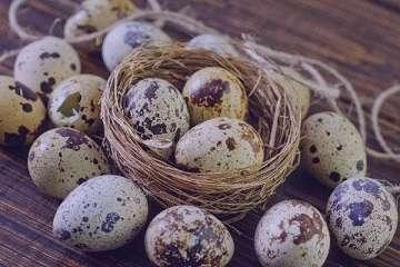 خواص تخم بلدرچین , تخم بلدرچین , خواص بلدرچین , خواص بلدرچین برای کودک