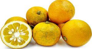 دمنوش و چای و رابطه نارنج و فشار خون بالا چیست