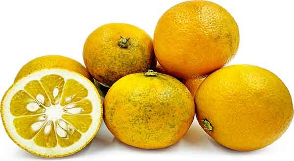 نارنج و فشار خون , نارنج و فشار خون بالا , آب نارنج و فشار خون , بهار نارنج و فشار خون