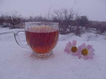چای در برف , چاي در برف , عکس چای در برف , چای داغ در برف