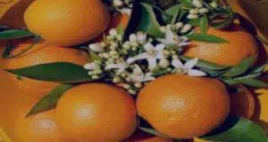 بهار نارنج و فشار خون ؛ رابطه بهار نارنج و فشار خون چیست