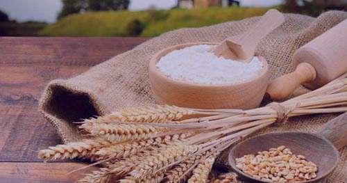 از خواص گندم در لاغری و کاهش وزن بیشتر بدانید
