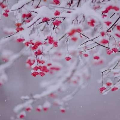 شعر در مورد آمدن زمستان