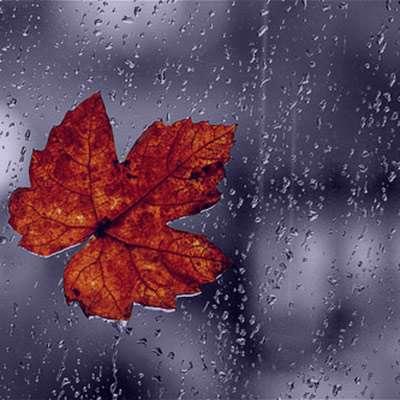 شعر در مورد باران از شاعران معروف