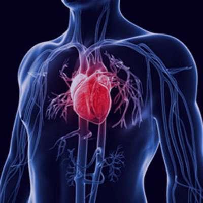 سرطان قلب