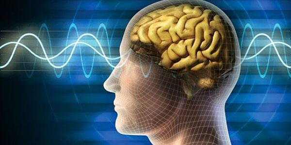 بیماری های اعصاب و روان , بیماری های اعصاب و روان چیست , بیماری های اعصاب و روان کودکان , بیماری های اعصاب و روانpdf