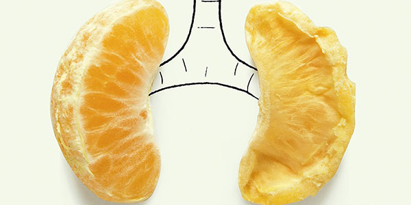 پاکسازی ریه , پاکسازی ریه از دود قلیان , پاکسازی ریه از عفونت , پاکسازی ریه از سیگار