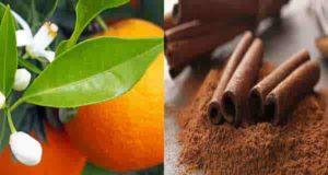 خواص و طرز تهیه دمنوش بهار نارنج و دارچین خوشمزه