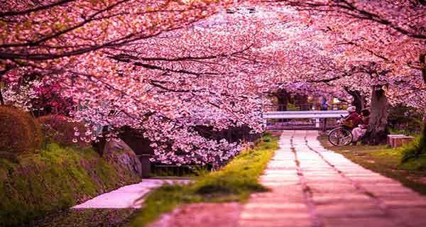 شعر دوبیتی در مورد بهار