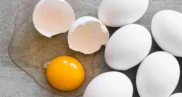 تعبیر خواب تخمه مرغ ، تعبیر خواب تخمه مرغ پخته ، تعبیر خواب تخمه مرغ از امام صادق ، تعبیر خواب تخمه مرغ سیاه